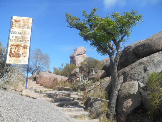 CAPILLA DEL MONTE : ENCONTRARON UN ARSENAL DE ARMAS, HAY UN DETENIDO