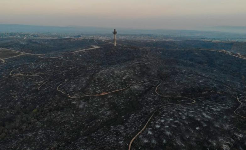 Venden en Facebook lotes arrasados por los incendios en Carlos Paz